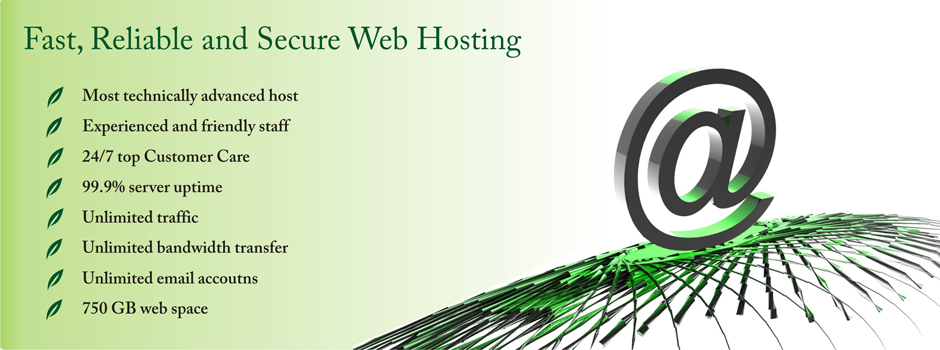 Fast, Reliable and Secure Web Hosting